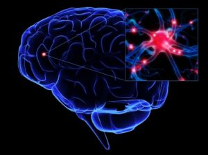 dna-activation-mirror-neurons