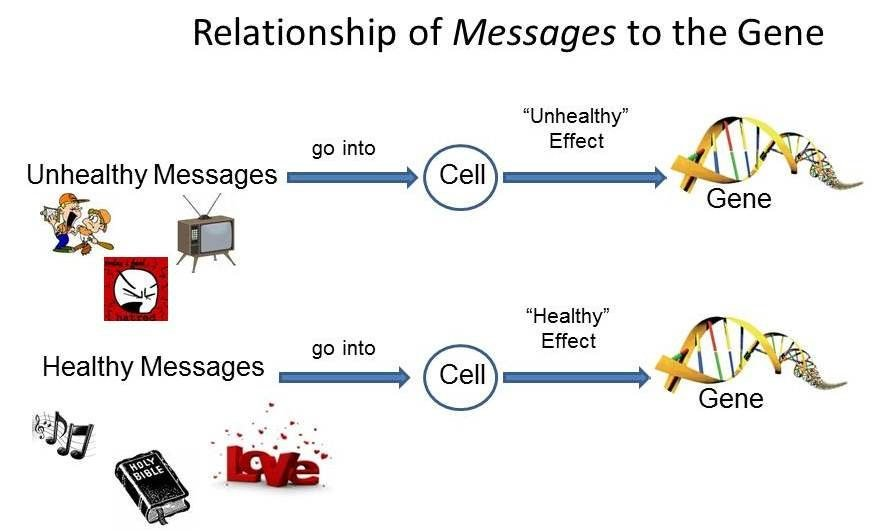 dna-gene-environment-interactions-1