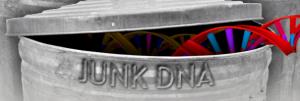 junk-dna-activation